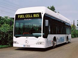 Orari Autobus Piazzoli